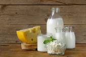 Assortment of dairy products (milk, cheese, sour cream, yogurt) — Foto de Stock