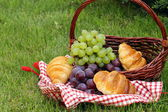 Picnic on green grass with grapes,apples and croissants — Stock Photo