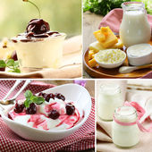 Collage of assorted dairy products (milk, cheese, yogurt, sour cream) — Foto de Stock