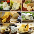 Collage of various types of cheese (brie, parmesan, cheddar, blue) — Stock Photo #65019839
