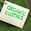 Green shirt made of natural fabrics with organic clothes label — Stock Photo #65757331