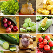 Collage of different vegetables (cabbage, radishes, potatoes, zucchini, corn, onions and garlic) — Stock Photo