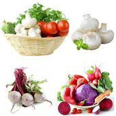 Set vegetables  herbs, mushrooms and beetroot on white background — Stock Photo