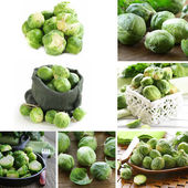 Collage of natural organic green brussels sprouts — Stock Photo