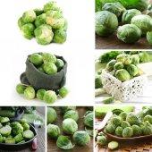 Colagem de couves de Bruxelas verde orgânico natural — Fotografia Stock