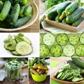 Collage of organic fresh and pickled cucumbers — Stock Photo