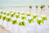 Decorative Bows on a Row of Chairs  — Stock Photo