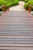 Walkway in garden  — Stock Photo