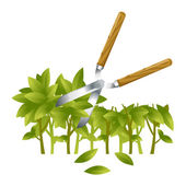Trimming Bushes — Stock Vector