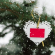 White Valentines lace heart with card on the snow fir tree — Stock Photo #63150915