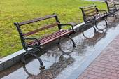 Wet benches after the rain — Stock Photo