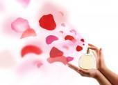 Woman hands spraying rose petals — Stock Photo