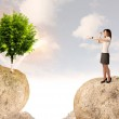 Businesswoman on rock mountain with a tree — Stock Photo #60035655