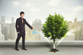 Businessman watering green tree on city background — Stock Photo