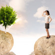 Businesswoman on rock mountain with a tree — Stock Photo #69236799