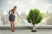 Businesswoman watering green tree on city background — Stock Photo