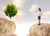 Businesswoman on rock mountain with a tree — Stock Photo
