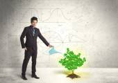 Business man watering a growing green dollar sign tree — Stock Photo