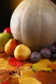 Pumpkin with fruits over leaves — Stok fotoğraf