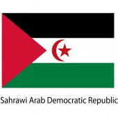 Flag  of the country  sahrawi arab democratic republic. Vector i — Stock Vector