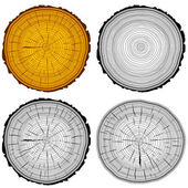 Set tree rings saw cut tree trunk background. Vector illustratio — Stock Vector