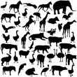 Set  silhouettes  animals and birds in the zoo collection. Vecto — Stock Vector #71744037