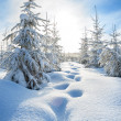 Winter landscape with the forest  and blue sky — Stock Photo #54758289