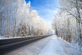 Winter landscape with the road the forest and the blue sky — Stock Photo