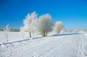 Winter  rural landscape with the road the forest and the blue sk — Fotografia Stock