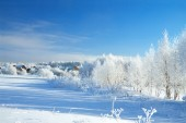 Beautiful rural winter landscape with the village and the forest — Stock Photo