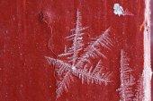 Macro frosty pattern  ice crystal natural — Stock Photo