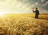 Searching for the new opportunites — Stock Photo