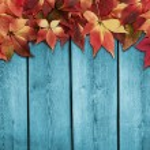 Autumn background — Stock Photo #84401524