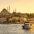 Постер, плакат: Tourist boat sails on the Golden Horn in Istanbul