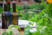 Garden party with wine and healthy food — Stock Photo