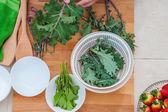 Kale and herbs vegan organic vegetables — Stock Photo