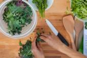 Preparing organic vegetables kale — Stock Photo