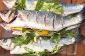 Prepared sea bass fish — Stock Photo