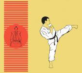 The man shows karate. — Wektor stockowy