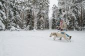 The woman with a dog on walk in a winter wood — ストック写真