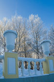 A beautiful city park with trees covered with hoarfrost — ストック写真