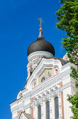 View of the dome of Alexander Nevsky Cathedral in Tallinn — 图库照片