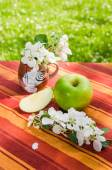 Green apple with a branch of a blossoming apple-tree — Stock Photo