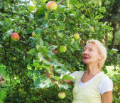 Portrait of a woman collecting apples in the garden — Stock Photo