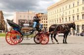 Coachman sits on a carriage, pulled by a horse, waiting for tour — Stock Photo