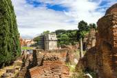 Picturesque ruins on the background of Arches of Constantine in — Stock Photo