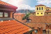 Roofs of houses in the city of Verona, Italy — Stockfoto