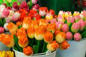 Sale of artificial souvenir Dutch tulips, Netherlands — Stock Photo