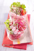 Sprouts salad in glass can — Stock Photo