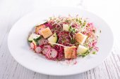 Vegetable salad with sprouts — Stock Photo